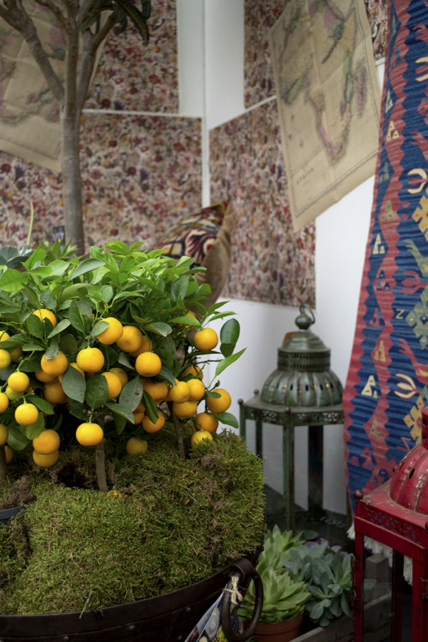Moroccan Oranges Burford