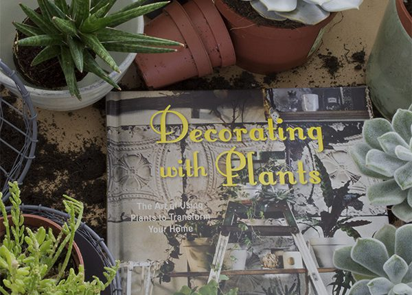 Dream decor new book inspiration by will taylor curate for Decoration urban jungle