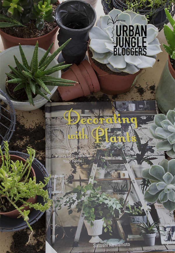 Urban jungle bloggers decorating with plants curate for Decoration urban jungle