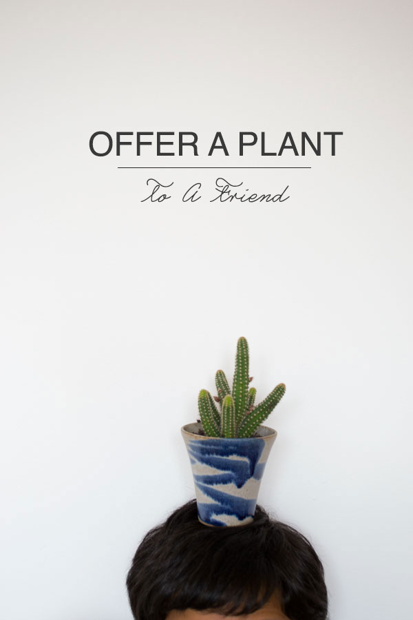 Urban-Jungle-Bloggers-Gift-A-Plant1