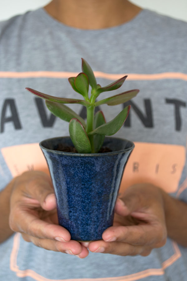Urban-Jungle-Bloggers-Gift-A-Plant3