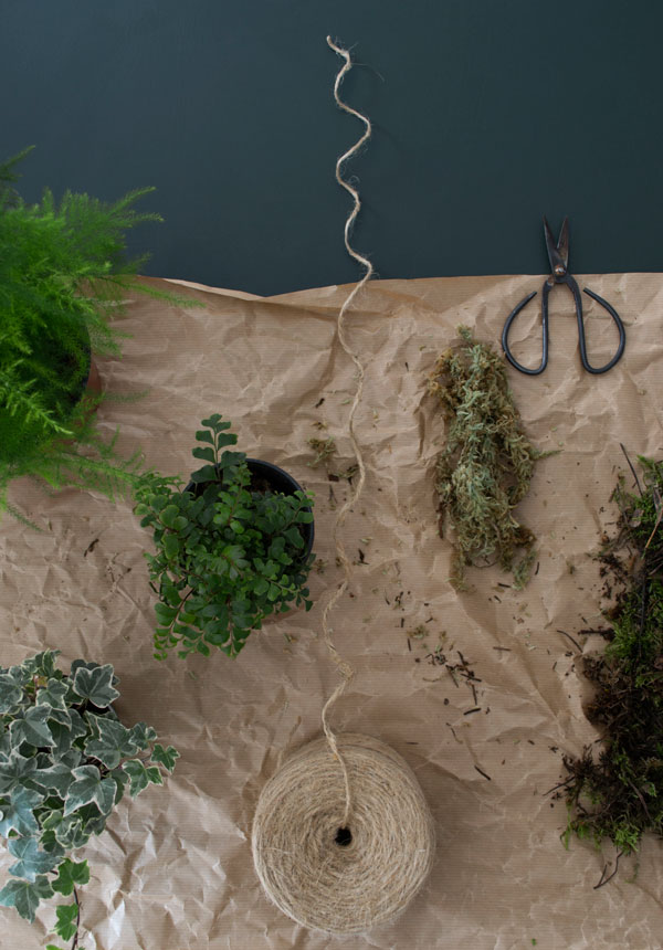 A simple step-by-step guide on how to make a kokedama hanging plant moss ball